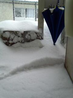 玄関に降り積もった雪